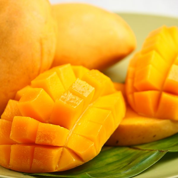 phillippine mango